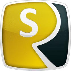 Reviversoft Security Reviver Logo